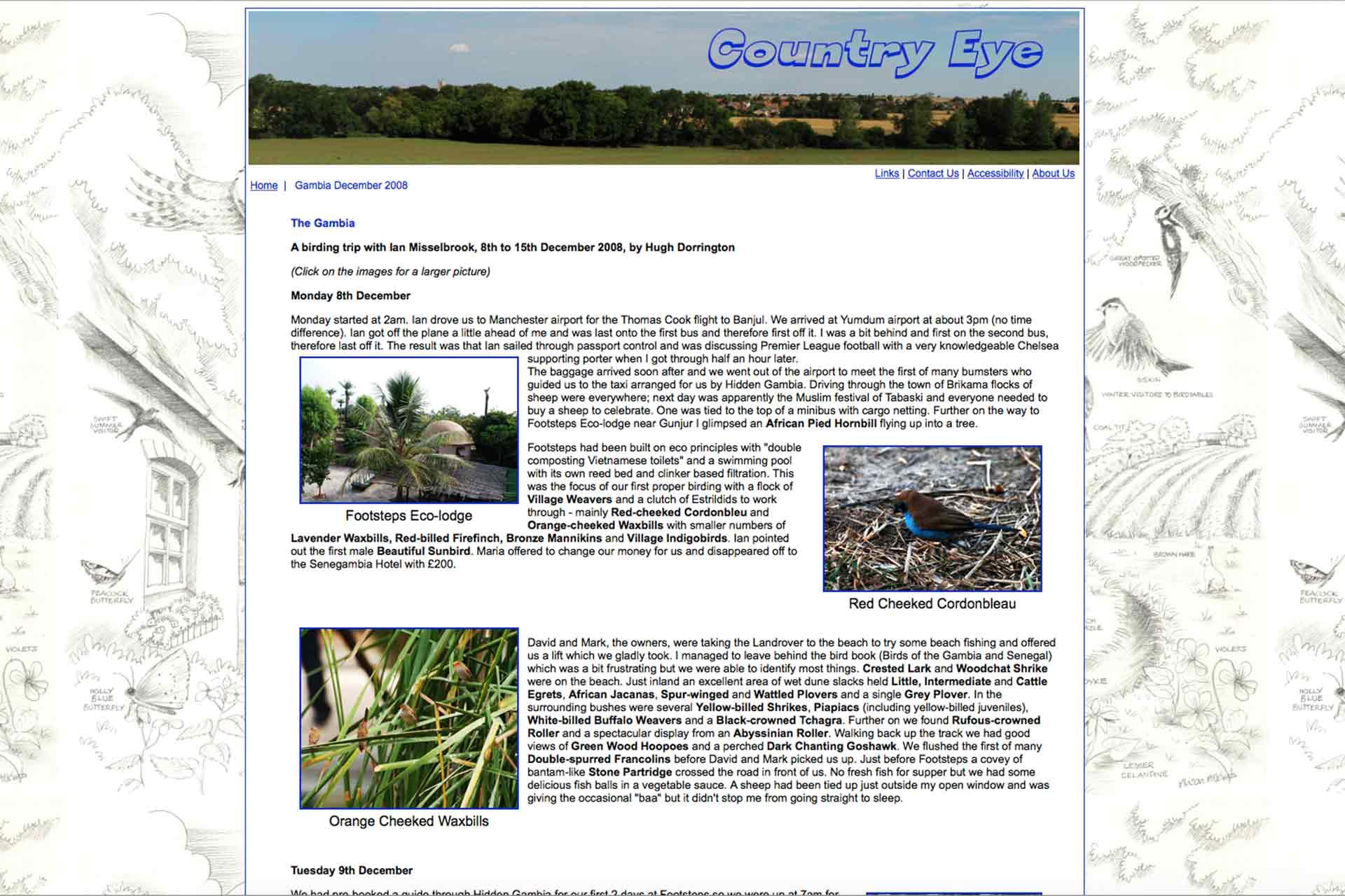 Gambia birding | Website Ian Misselbrook