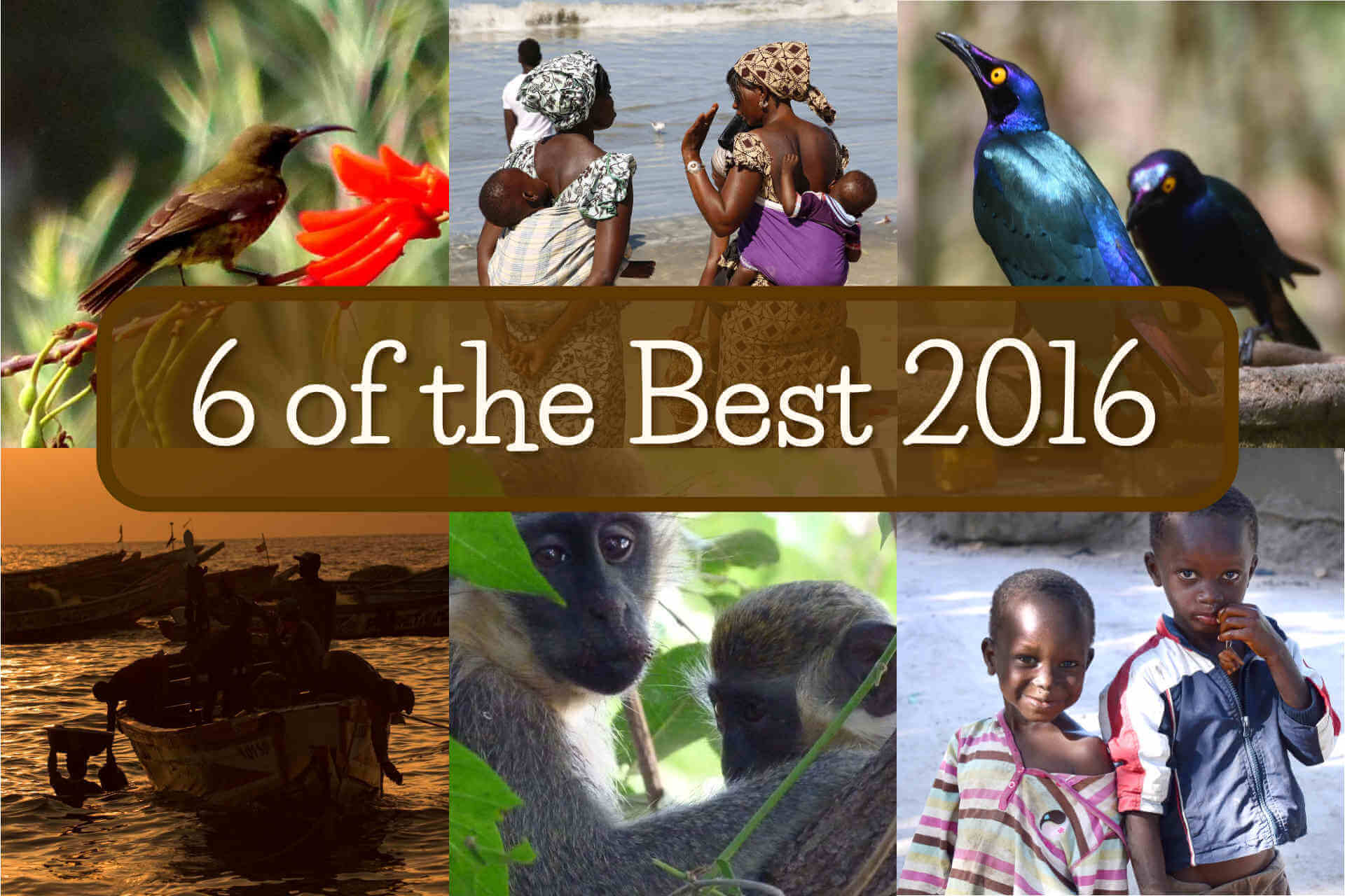 6 of the best Gambia photos 2016