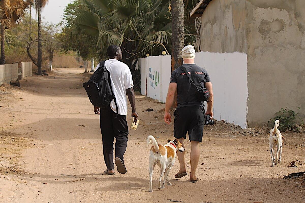 Lamin walk n talk | Gambia Bird Guide