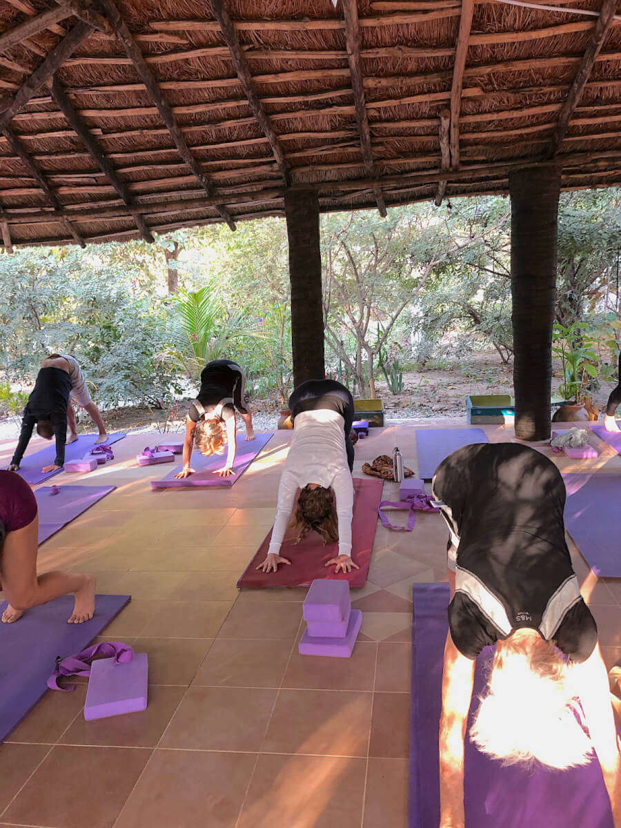 Gambia yoga review | The downward dog
